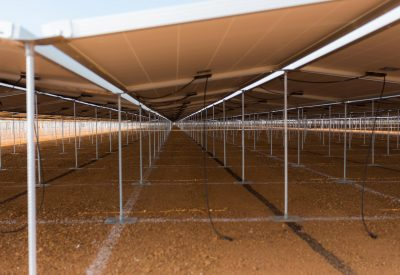 Challenging conventional approaches to solar farm installations